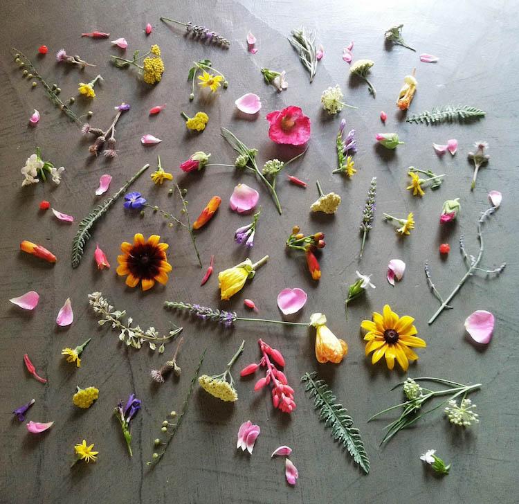 ja-soon-kim-botanical-arrangements-11