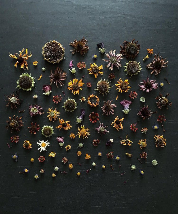 ja-soon-kim-botanical-arrangements-13