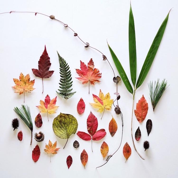 ja-soon-kim-botanical-arrangements-2
