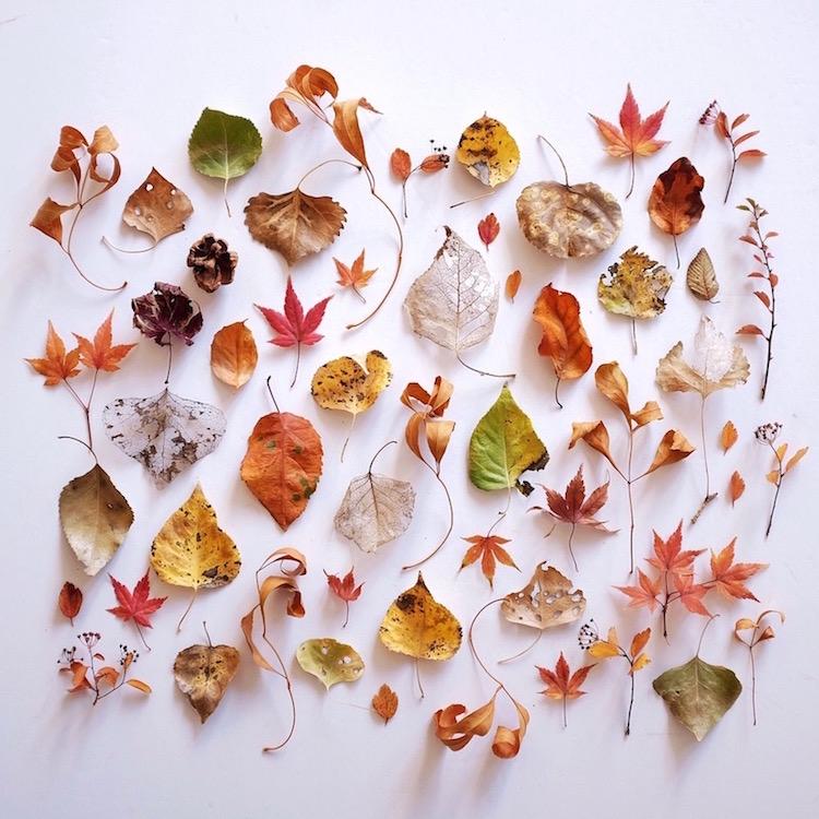 ja-soon-kim-botanical-arrangements-8